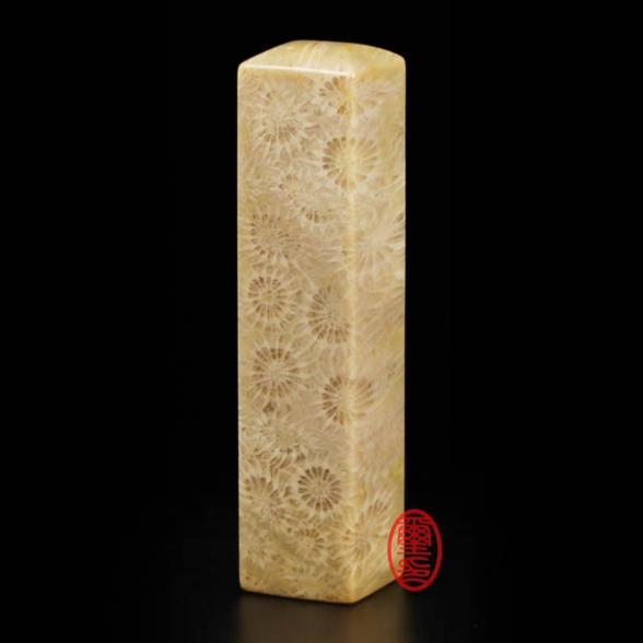 寶石印章-珊瑚化石印章(方形)