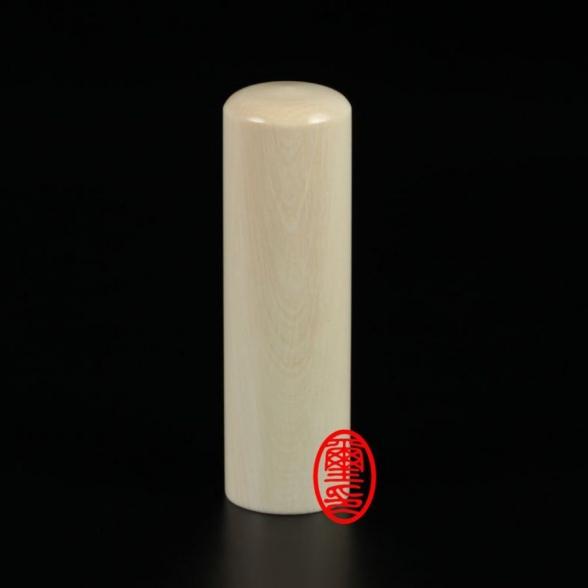赤牛角臍帶章-肚臍章-(藏寶)